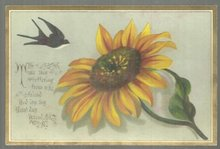 Victorian Birthday Card Offering from a Friend with Bird and Large Flower
