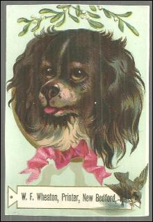 Victorian Trade Card for W. F. Wheaton, Primer, New Bedford with Dog