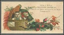 Victorian Card for Walter A. Walling Registered Pharmacist Providence RI Kittens