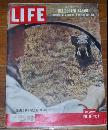 Life Magazine June 10, 1957 Charge of a Wild Elephant on the cover