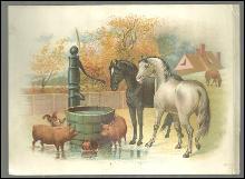 Victorian Trade Card For Howard, Clark & Co. Furniture Brockton, MA Farm Animals