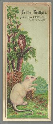 Victorian Trade Card for Fulton Brothers, Lawrence, MA Owl and White Mouse