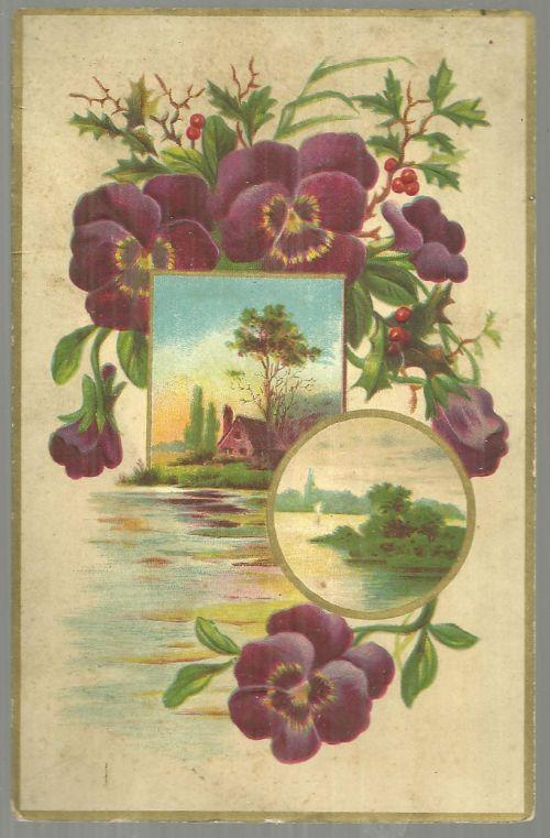 Victorian Trade Card For Capital Coffee with Pansies