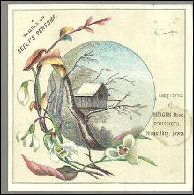 Victorian Trade Card for Seely's Perfumes with Birdhouse Surrounded by Flowers