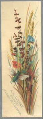 Victorian Trade Card or Bookmark for A. R. Glidden, Druggist Lawrence, MA