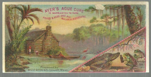 Victorian Trade Card for Ayer's Ague Cure with Swamp Scene and Alligators