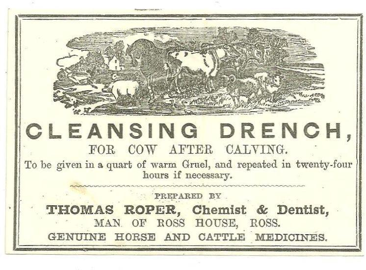 Label for Thomas Roper Cleansing Drench for Cows Man of Ross House, England