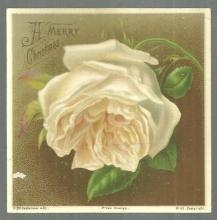 Victorian Merry Christmas Card with White Rose