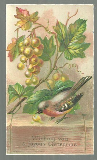 Victorian Christmas Card with Robin Wishing You a Joyous Christmas