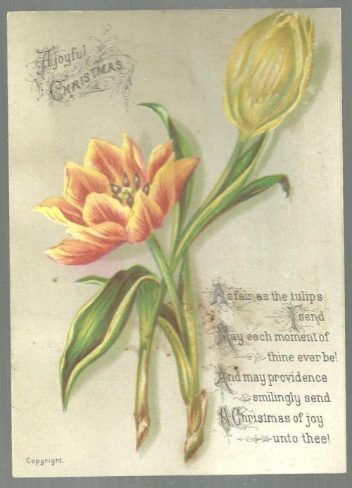 Victorian Christmas Card with Tulips A Joyful Christmas Fair as the Tulips