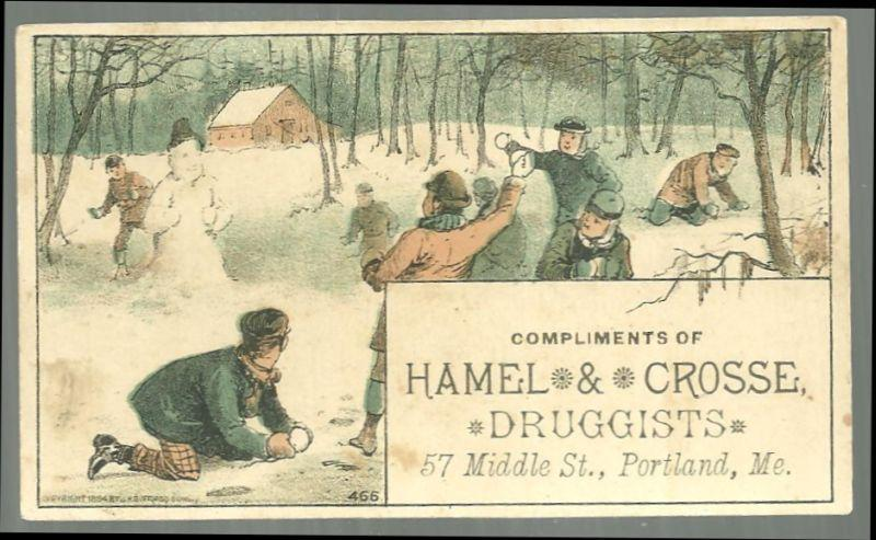 Victorian Trade Card Compliments of Hamel and Crosse Druggists w/Snowball Fight