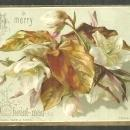 Victorian Raphael Tuck Christmas Card with Leaves A Merry Christmas