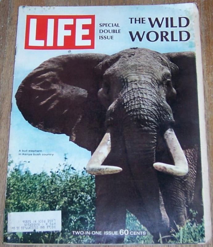 Life Magazine December 22, 1967  Special Double Issue the Wild World