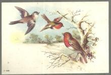 Victorian Trade Card Vienna Roller Mills Flour With Birds and Snowy Landscape