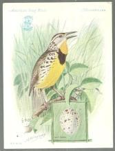 Victorian Trade Card Singer Sewing Machine American Song Birds Meadowlark