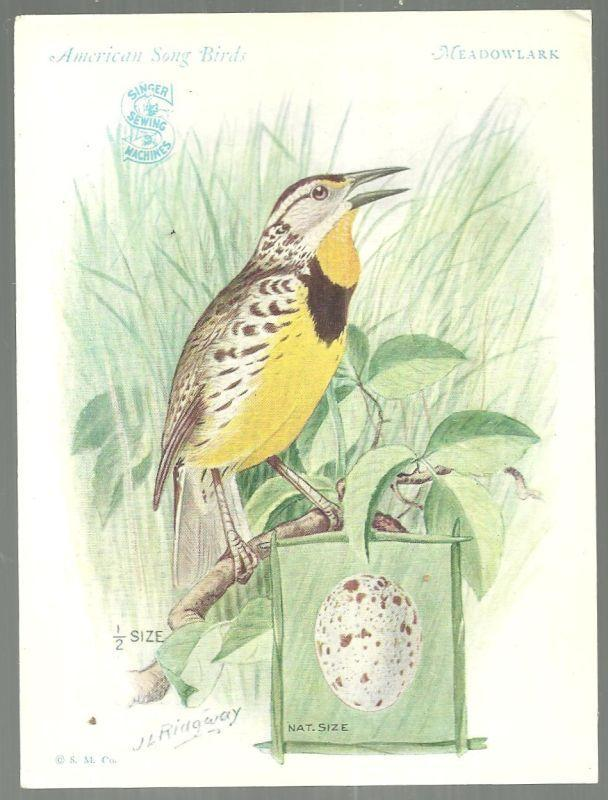 Victorian Trade Card Singer Sewing Machine American Song Birds Meadowlark