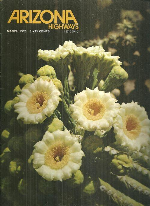 Arizona Highways Magazine March 1973 The Desert and Cactus