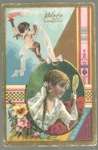 Victorian Trade Card for Larkin Boraxine, Buffalo, New York with Lovely Lady