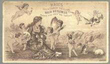 Victorian Trade Card for Hall's Vegetable Sicilian Hair Renewer with Lovely Lady