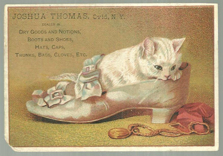 Victorian Trade Card for Joshua Thomas Dry Goods Ovid, NY with Kitten in Shoe
