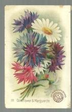 Victorian Trade Card Arm and Hammer Baking Soda Beautiful Flowers Cornflower