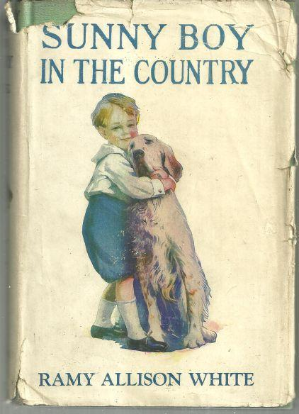 Sunny Boy in the Country by Ramy Allison White 1920 with Dust Jacket #1