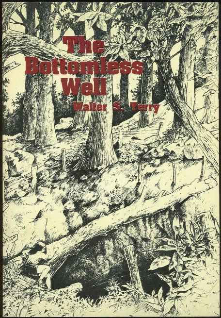Bottomless Well by Walter Terry 1991 Southern Alabama Fiction