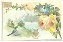 Victorian Trade Card for Peninsular Stoves with Blue Birds and Yellow Roses