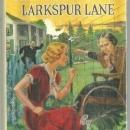 Password to Larkspur Lane by Carolyn Keene Nancy Drew #10 1933 with Dust Jacket