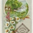 Victorian Trade Card for Charter Oak Range St. Louis with Flowers and Landscape