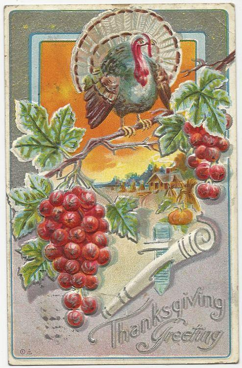 Thanksgiving Greetings Postcard with Turkey on Branch and Fall Landscape 1911