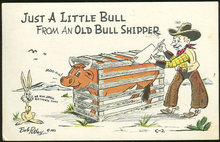 Petley Comic Postcard of Little Bull From Bull Shipper