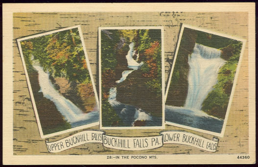 Postcard of Buckhill Falls Pennsylvania in the Poconos