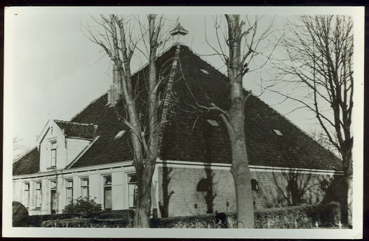 Real Photo Postcard of Model Farm in North Holland