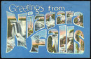 Greetings Postcard from Niagara Falls, New York 1955