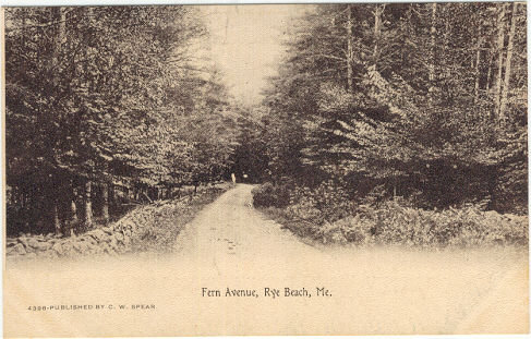 Postcard of Fern Avenue, Rye Beach, Maine