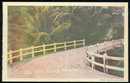 Postcard of On the Road North, Trinidad, Caribbean