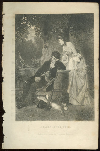 Asleep in the Wood Page from 1876 Peterson's Mag