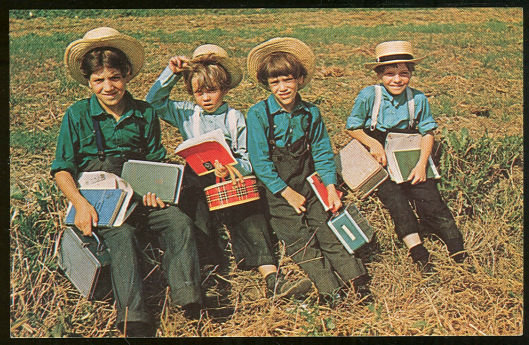Postcard of Group of Amish School Boys Resting