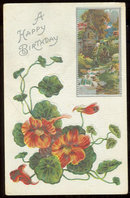 Happy Birthday Postcard with Nasturtiums and Old Mill