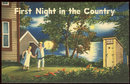 Vintage Comic Postcard of First Night in the Country