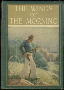Wings of the Morning by Louis Tracy 1924 Illustrated