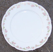 Vintage Austrian Dinner Plate with Pink Flowers