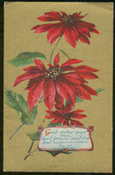 Gold Postcard of Poinsettias Offering Good Wishes