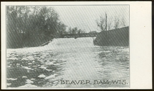 Beaver Dam, Wisconsin Undivided Postcard