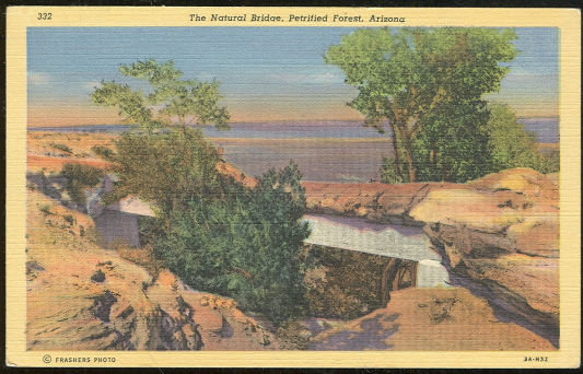 Postcard of Natural Bridge Petrified Forest, Arizona