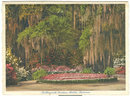 Postcard of Bellingrath Gardens, Mobile, Alabama