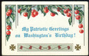 Washington's Birthday Patriotic Postcard with Cherries