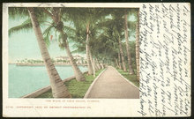 Postcard of The Walk at Palm Beach, Florida 1904