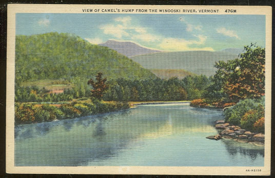 Postcard Camel's Hump from Windoski River Vermont 1954